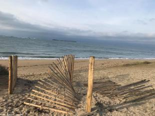 Près de 200 mètres de clôtures protégeant la dune de Penthièvre ont fait l'objet d'une dégradation et d'un arrachage sauvage